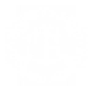Koguva sadam